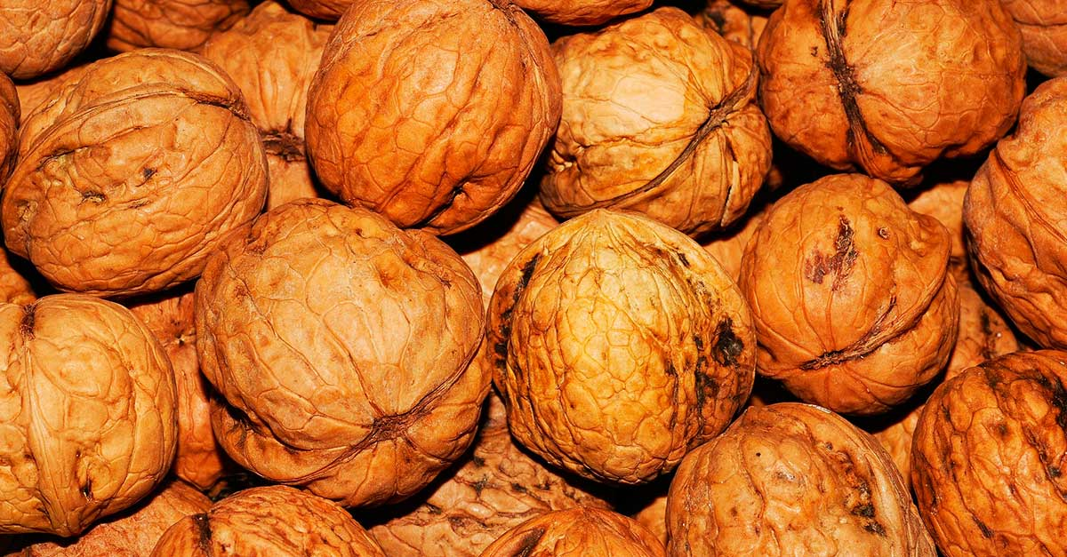 Best vegan protein sources: walnuts